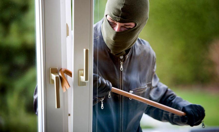 5 Kategori Pencuri Burung dan Modus Pencurian Burung yang Harus Diwaspadai