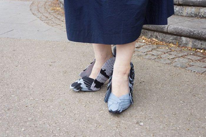 Sepatu Burung Merpati tampak depan (Boredpanda.com)