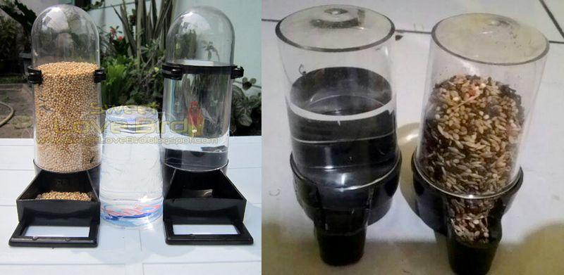 Tempat pakan dan minum burung otomatis model dispenser (Bukalapak dan tokopedia)