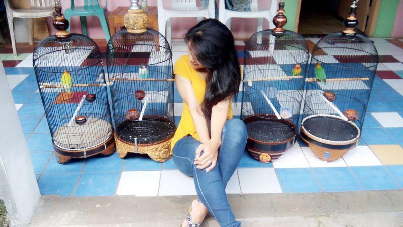 Lovebird birahi (lnprponorogo.blogspot.com)