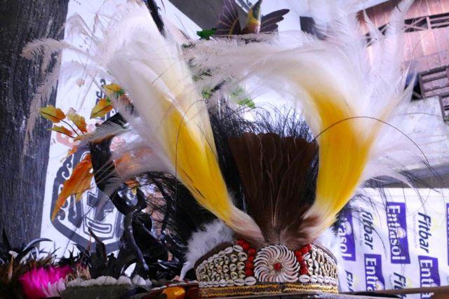 Hiasan mahkota burung Cenderawasih asli (Asrida Elisabeth-Mongabay.co.id)