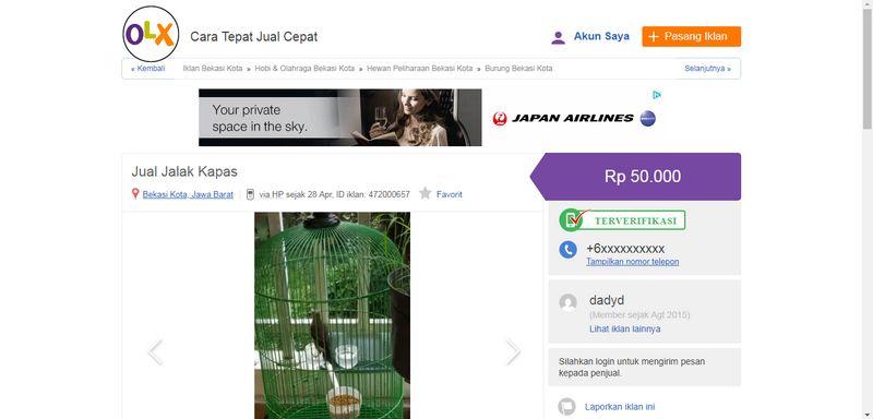 Harga Burung Jalak Kapas (olx.co.id)
