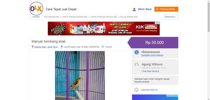 Harga Burung Manyar Kembang (olx.co.id)