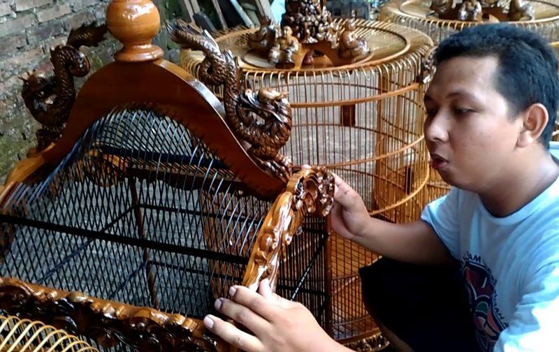 Cara ganti sangkar baru agar burung tidak stres dan macet bunyi (youtube.com)