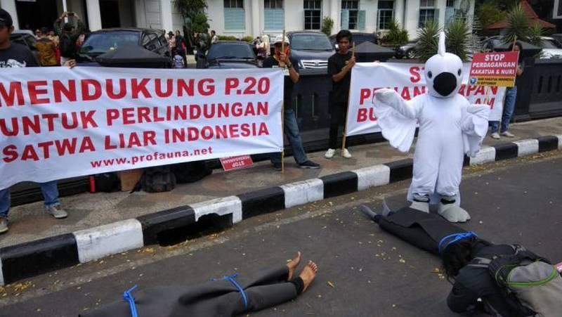 Profauna, Flight, dan Burung Indonesia Tolak Revisi Permen LHK 20/2018