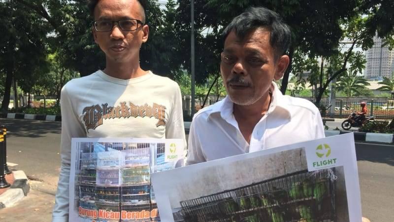 Demo Aktivis Flight Menuntut Murai Batu, Jalak Suren, dan Cucak Rawa Tetap Dilindungi (kumparan.com)