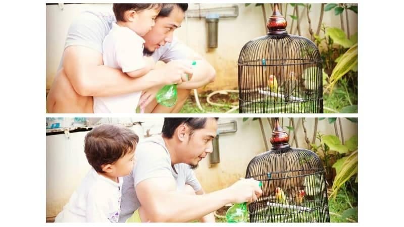 Rizky Kinos dan anaknya memandikan burung Lovebird (kumparan.com)