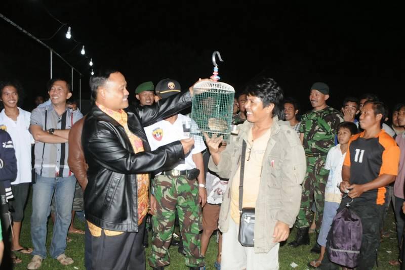Cara Merawat Burung Puyuh Lomba (koremwirabhakti.blogspot.com)