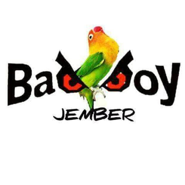 Lovebird Mata Dewa Bad Boy Meninggal (facebook.com)