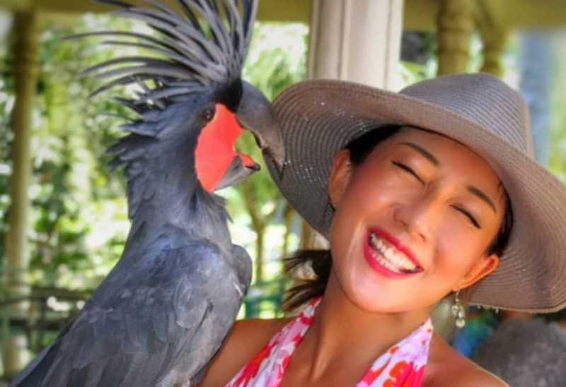 Jenis Burung Paling Mahal di Dunia (twitter.com)