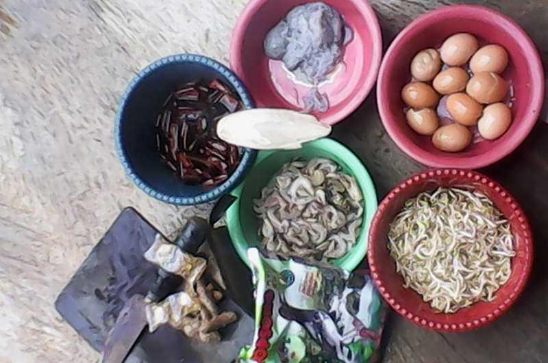 Racikan Pakan Murai Batu dari Seafood dan Jamu Tradisional (titaniumbirdfarm.com)