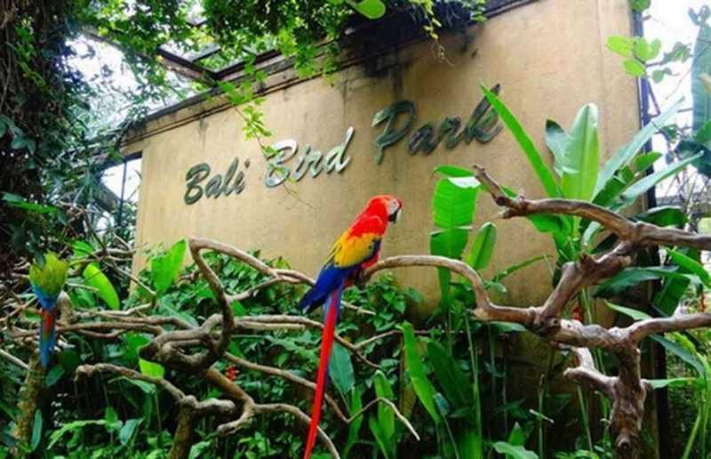 Taman Burung Bali (hargatiket.net)