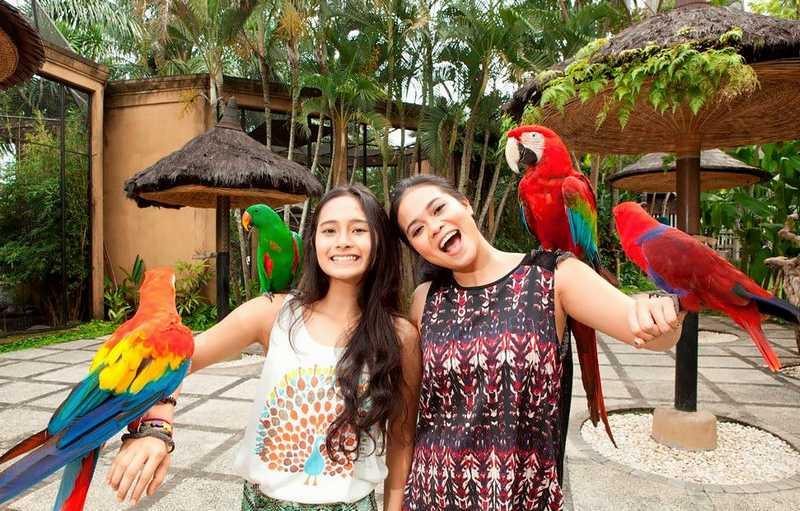 6 Taman Burung di Indonesia Paling Indah untuk Liburan