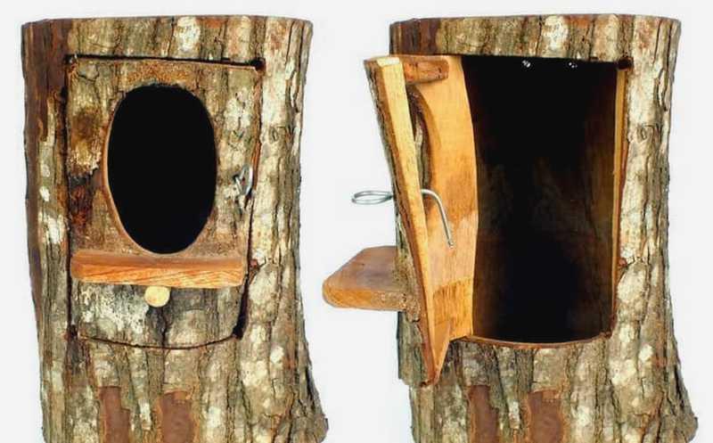 Glodok Lovebird Pohon (tokopedia.com)