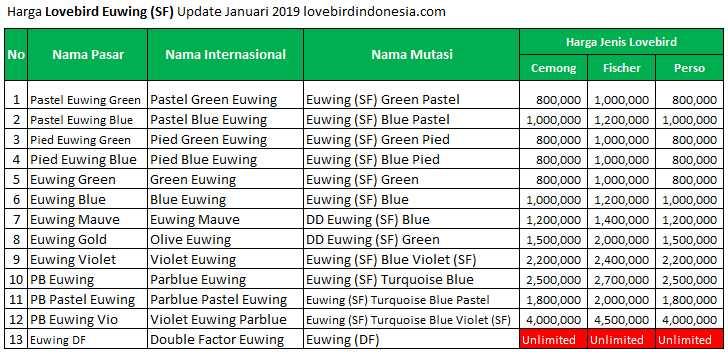 Harga Lovebird Euwing Terbaru (lovebirdindonesia.com)