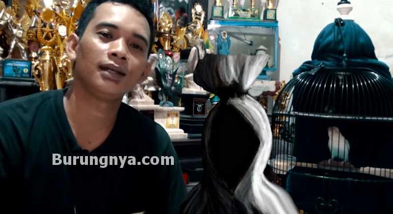 Kisah Mistis Lovebird Tali Pocong (youtube.com)