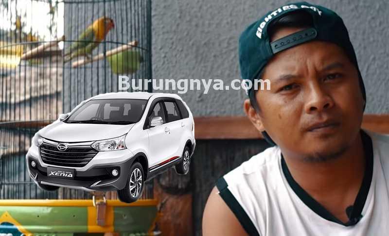 Lovebird Klitik Ditukar Mobil Xenia (youtube.com)