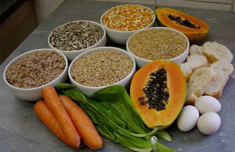 Makanan Lovebird Ternak (agasscom.org)