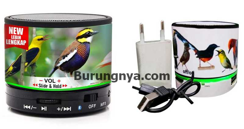 Masteran Murai Batu MP3 (onlineaseanprice.org)