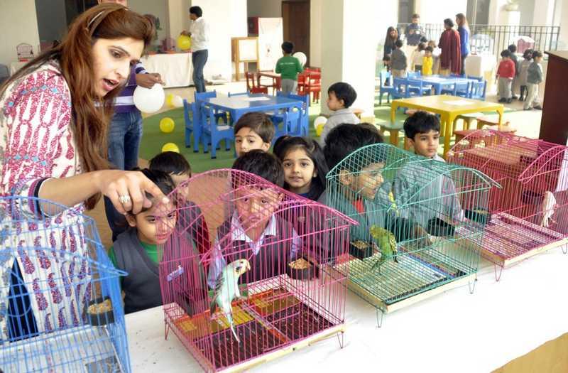 Sangkar Burung dari Besi (thecityschool.edu.pk)
