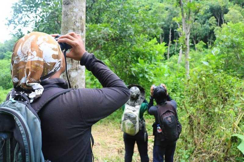 Pengamatan Burung di Petungsewu (P-WEC)