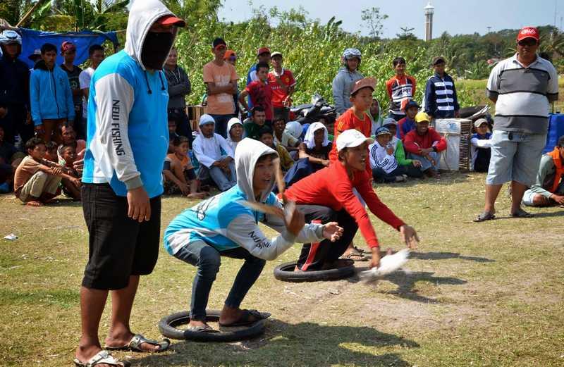 Cara Menghitung Kecepatan Burung Merpati Balap Sprint (beritaphoto.com)