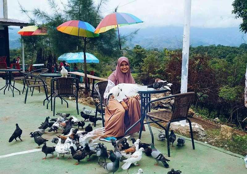 Taman Wisata Burung Dara (steemkr.com)