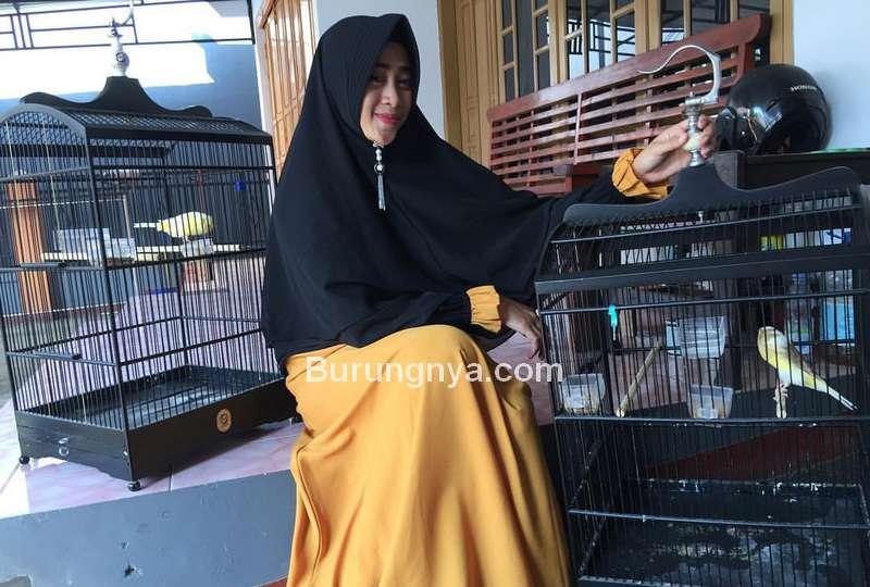 Istri Suka Memelihara Burung (stapico.com)
