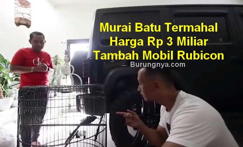 Murai Batu Termahal Harga Rp 3 Miliar Tambah Mobil Rubicon (youtube.com)