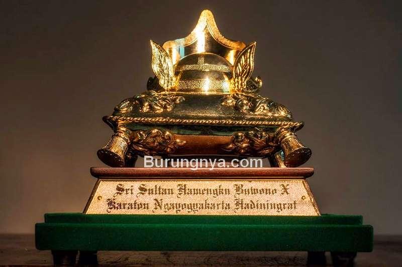 Piala Raja Lomba Burung di Yogyakarta (tangtungan.com)