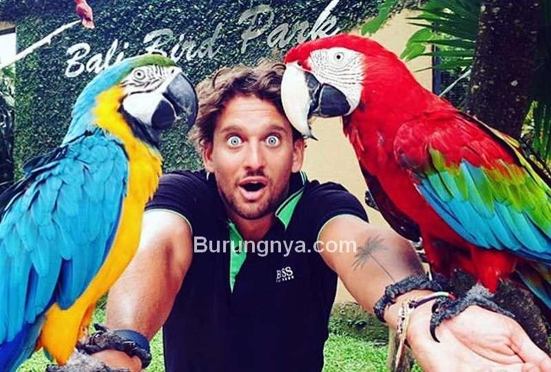 Wisata Burung Bali Bird Park (instagram.com)