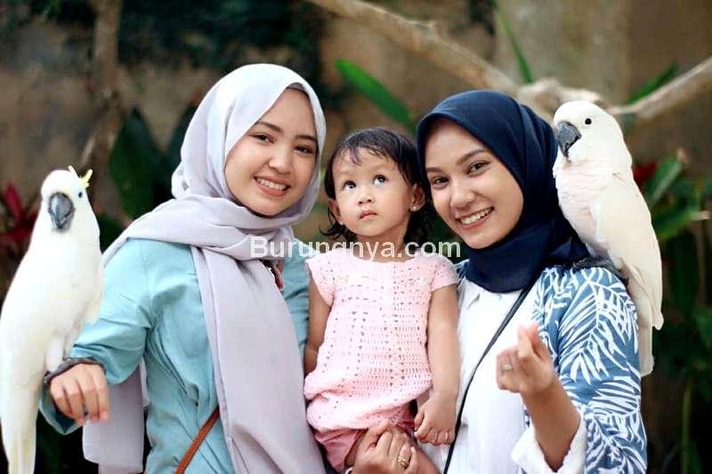 Wisata Burung di Bali (instagram.com)