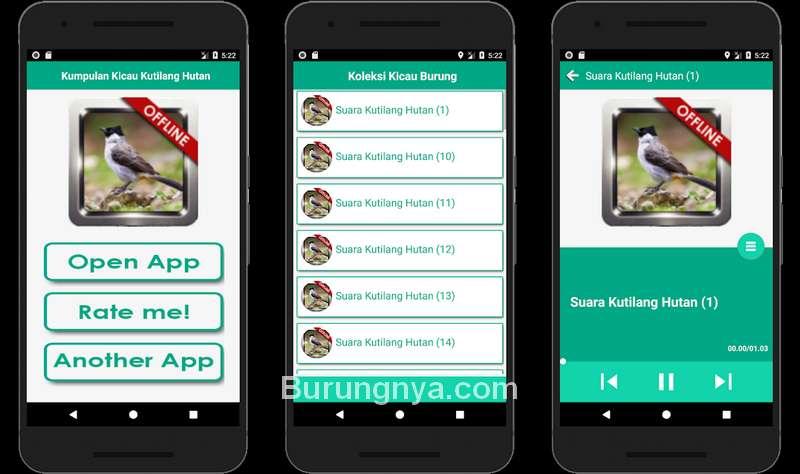 Aplikasi Kumpulan Kicau Kutilang Hutan (play.google.com)