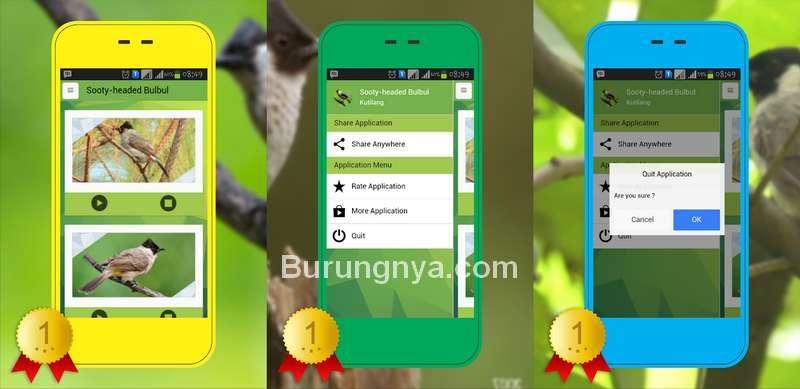 Aplikasi Kutilang (play.google.com)