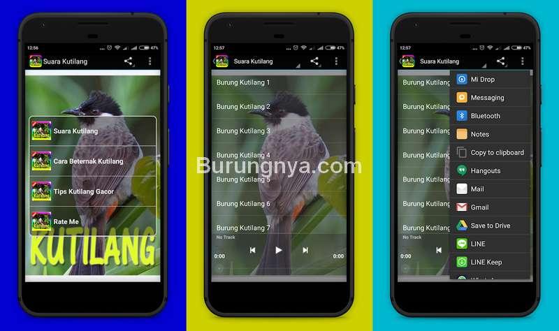 Aplikasi Suara Burung Kutilang MP3 (play.google.com)