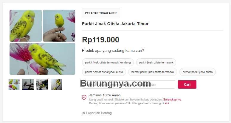 Harga Parkit (bukalapak.com)