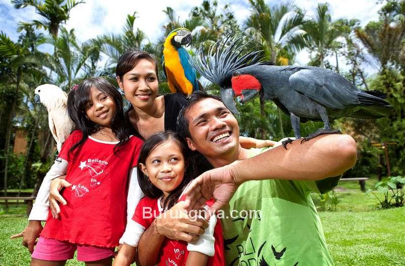 Taman Burung Bali (balibirdpark.com)