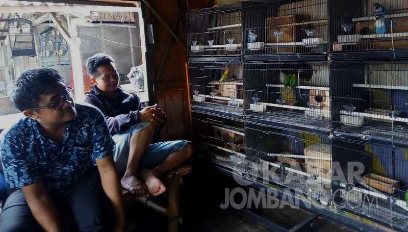 Akibat Virus Corona Omzet Pedagang Burung Turun Drastis (kabarjombang.com)