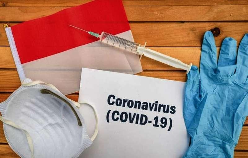 Update Daftar Lomba Burung yang Ditunda karena Virus Corona (kompas.com)
