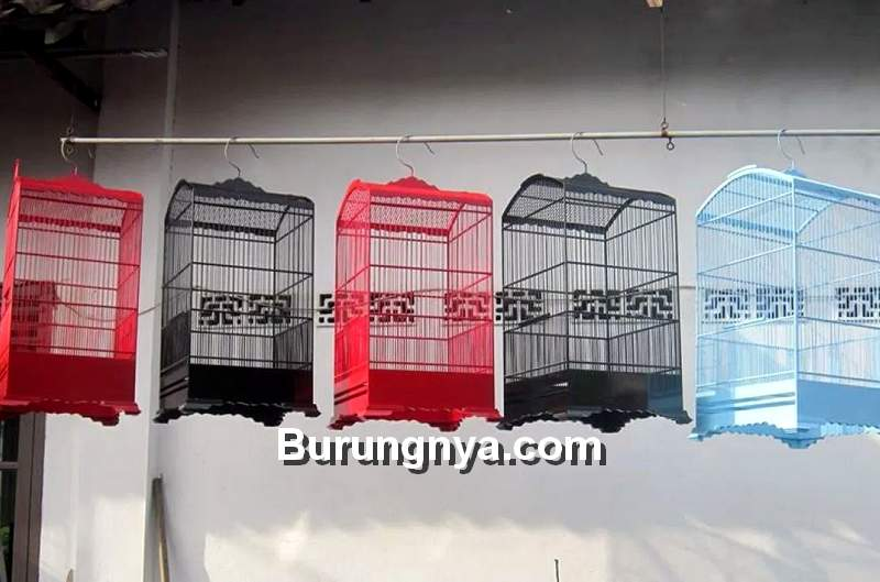 Sangkar Burung Cendet (omkicau.com)