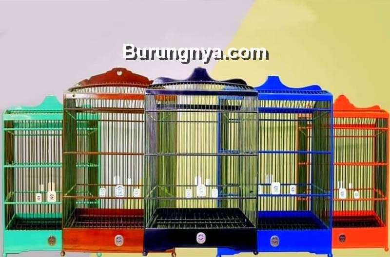 Sangkar Burung Jalak (shopee.co.id)