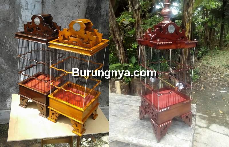 Sangkar Burung Pleci (tokopedia.com)