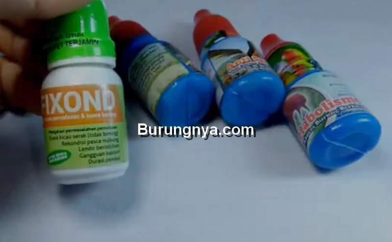 Obat Burung Kenari (youtube.com)