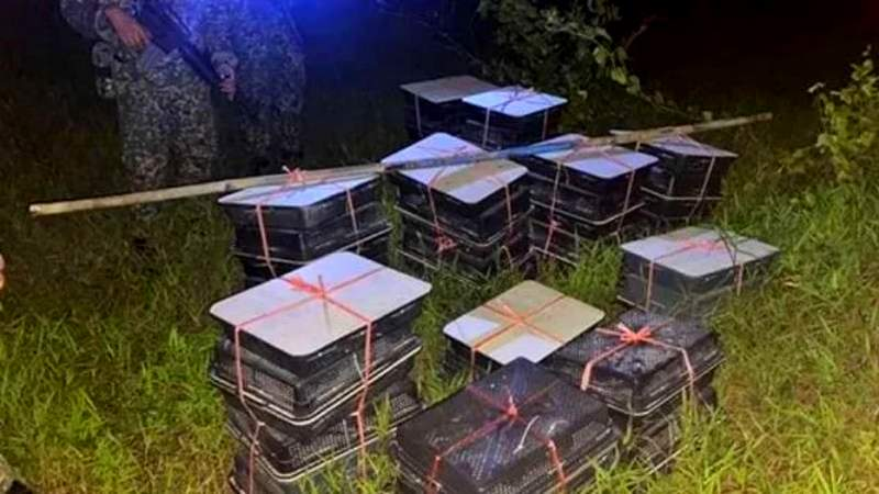 Tentara Temukan Kotak Misterius Berisi Ratusan Murai Batu (viva.co.id)