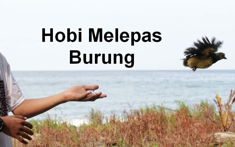 Hobi Unik Melepas Burung (nationalgeographic.org)
