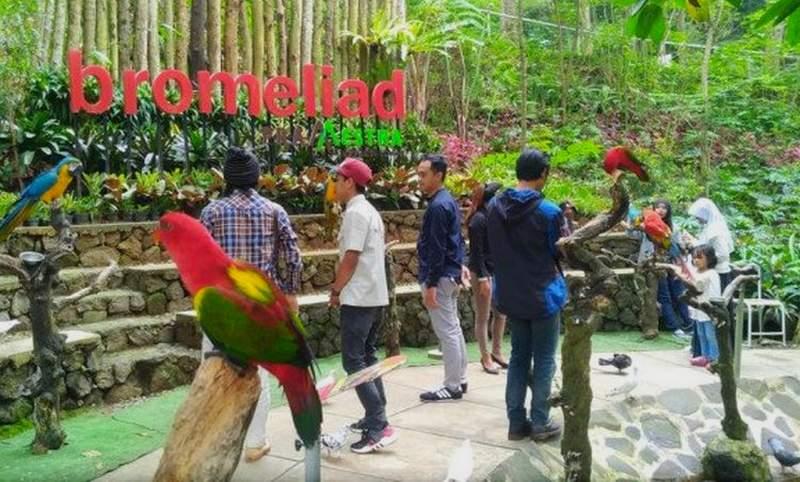 Taman Burung Bird and Bromelia Pavillion (pikiran-rakyat.com)