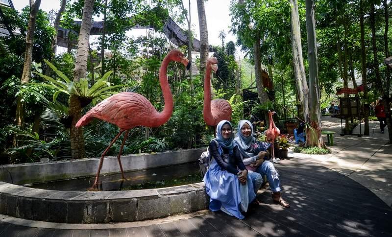 Taman Wisata Burung di Bandung Bird Bromelia Pavillion (firabani.blogspot.com)