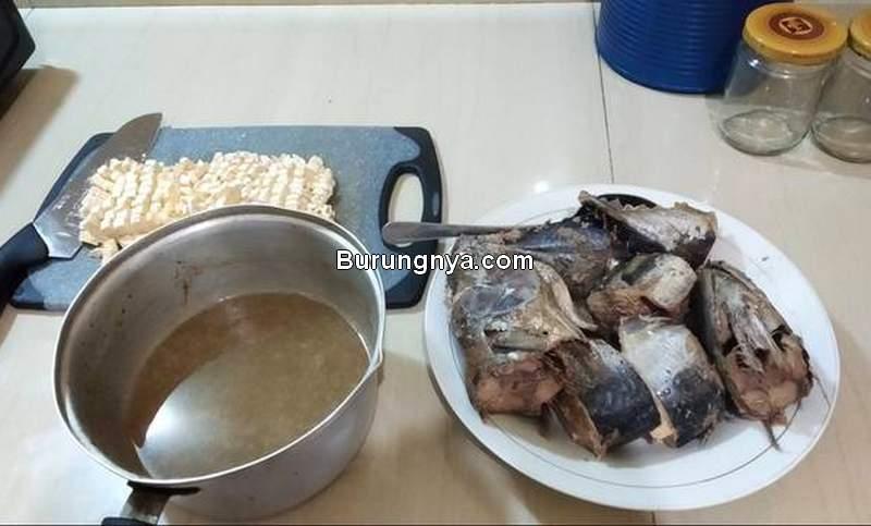 Cara Membuat Makanan Kucing Basah Murah dari Tempe dan Ikan (cookpad.com)