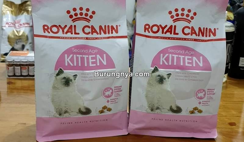 Makanan Kucing Royal Canin (pinterest.com)