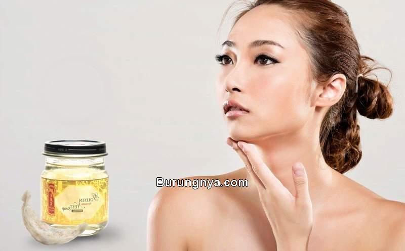 Manfaat Sarang Walet untuk Kecantikan (goldennest.com)